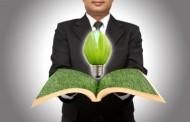 afaceri-energie-verde